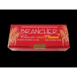 Brancher Classic Opera Tenor Saxophone Reed, Strength 2.5 x4