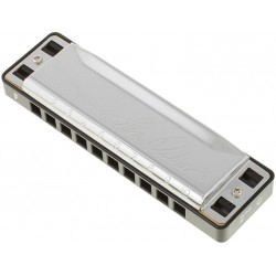 Lee Oskar Major Diatonic Harmonica, In F